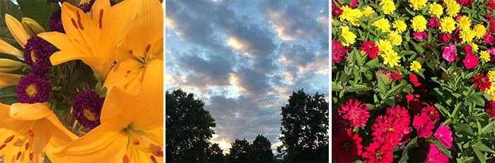 OJ_MHWL_07-22-2014_01