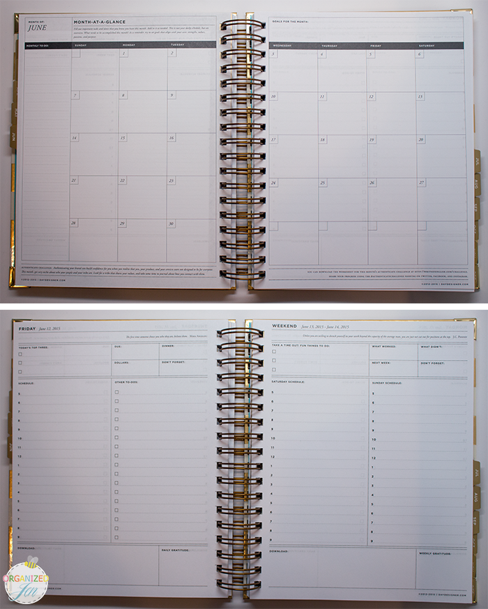 image relating to Daily Designer identified as Simplified Planner vs Working day Designer: Planner Comparison