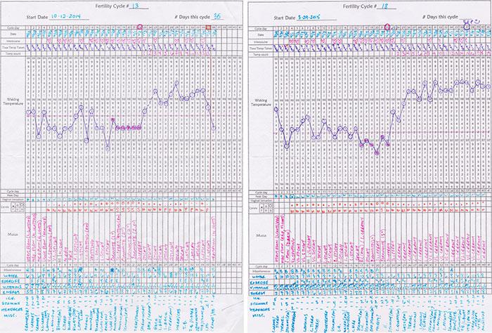 chart comparison 2015