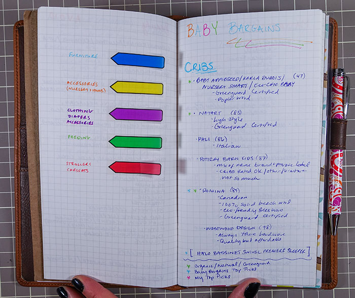 pregnancy journal notes