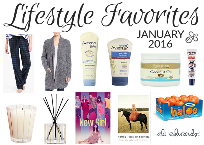 lifestyle favorites january 2016