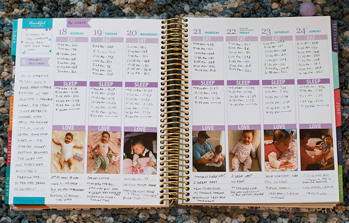 charlotte baby planner weekly spread 2016