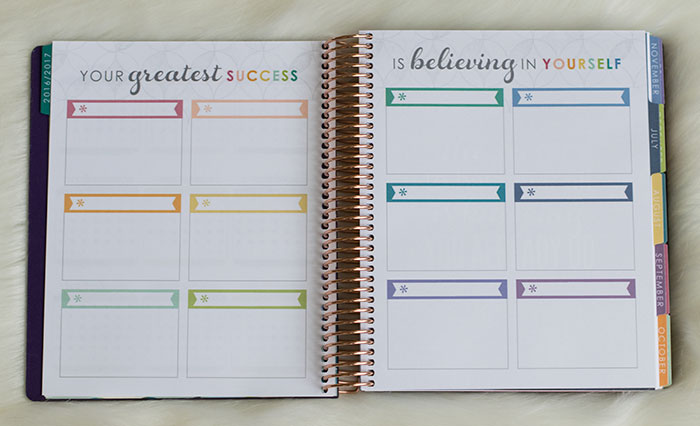 erin condren 2016-17 life planner colorful goal setting